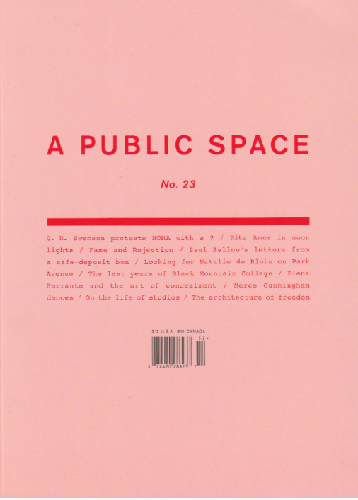 Cover of A Public Space Issue 23